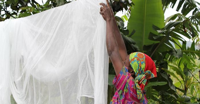 how to wash mosquito net